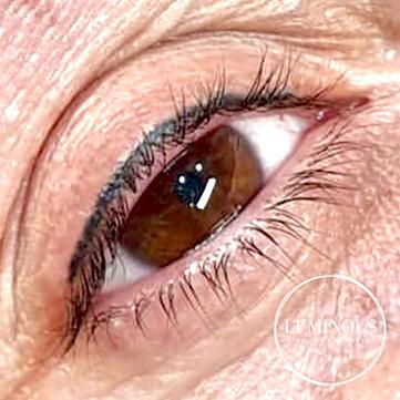 eyelash liner